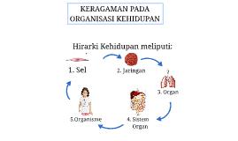 Copy of KERAGAMAN PADA organisasi kehidupan (sel)