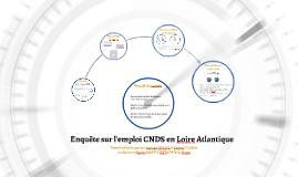 Enquête sur l'emploi CNDS en Loire Atlantique