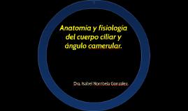 Anatomía y fisiología del cuerpo ciliar y ángulo camerular.