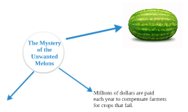 Copy of The Mystery of the Unwanted Melons