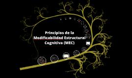 Principios de la MEC