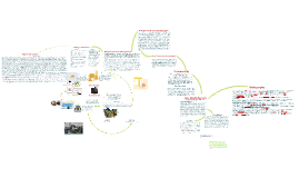 Copy of The Life Cycle Of A Television