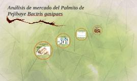 Análisis de mercado del Palmito de Pejibaye Bactris gasipaes