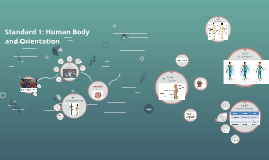 Standard 1: Human Body and Orientation