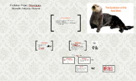 Evolution Project Powerpoint