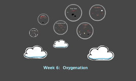 Week 6 Oxygenation