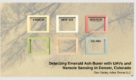 Detecting Emerald Ash Borer with UAVs and Remote Sensing in Denver, Colorado
