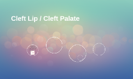 Cleft Lip / Cleft Palate