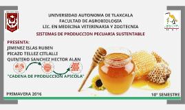 Cadena Productiva de la Miel