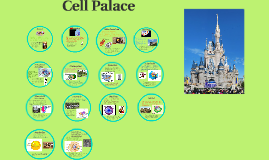 Cell Palace