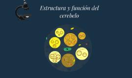 Estructura y función del cerebelo