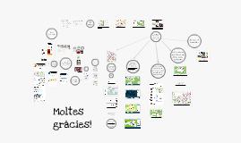 Presentació OpenStreetMap a l'associació de comerciants de La Palma
