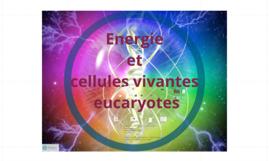 SPE theme 2 energie et cellules eucaryotes