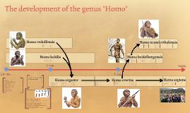 "The development of the genus ""Homo"""