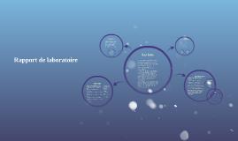 Copy of Rapport de laboratoire