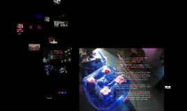 Research in Media Art: 2009-2014