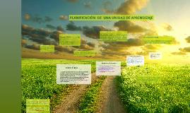 Copy of PLANIFICACIÓN  DE  UNA UNIDAD DE APRENDIZAJE