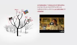Copy of educacion indigena y escuelas zapatistas