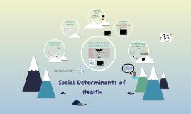 Social Determinants of Health (FPL)