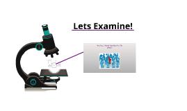 Lets Examine!