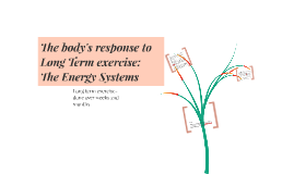 LT exercise-effect on: Energy Systems