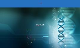 Copie de CRISPR Cas-9