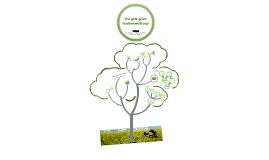 Ökologische Stadtentwicklung