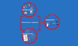 Copy of Thema 4 Waarneming en Regeling