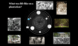What was life like on a plantation?