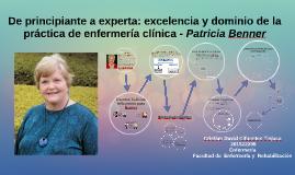 De principiante a experta: excelencia y dominio de la práctica de enfermería clínica - Patricia Benner - (Cristian David Cifuentes Tinjaca - 201522298 - Enfermeria)