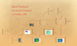 Optimal Location for Vineyards