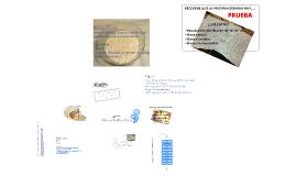 Copy of Masas Fermentadas