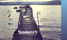 Copy of Tumbes<3