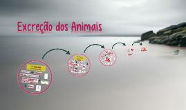 Excreção dos animais