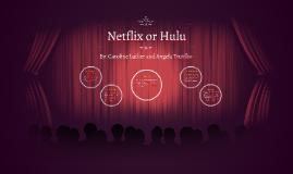 Netflix or Hulu
