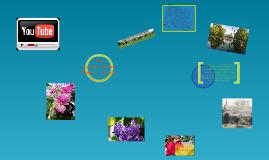 United States Botanic Garden: Presentation