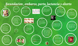 Copy of Fecundacion , embarzo, parto, lactancia y aborto