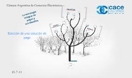 CACE ELECCION DE UNA SOLUCION DE PAGO