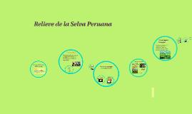 Copy of Relieve de la Selva Peruana