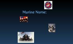 Marine Nurse