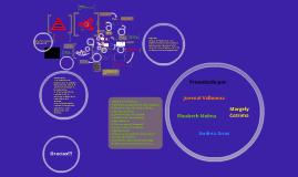 Copy of MODELOS DE COMUNICACION ORGANIZACIONAL