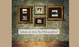"""Galería de fotos """"La Metamorfosis"""""""