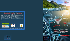 CRISPR/GMO laks Nordahl Grieg VGS 120917