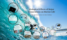 Ecological of Major Corporations on Marine Life