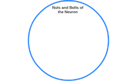 Nuts and Bolts of the Neuron