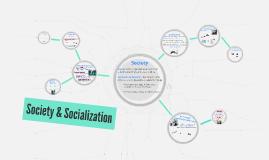 Society & Socialization