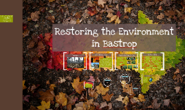 Restoring the Environment (new)