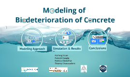 Copy of Modelling of Biodeterioration of concrete