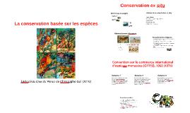 La conservation basée sur les espèces