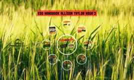 Egg handbook allison taylor hour 3